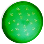 Ecola GX53 LED color 8,0W Tablet 220V Green Зеленый матовое стекло (композит) 28x74